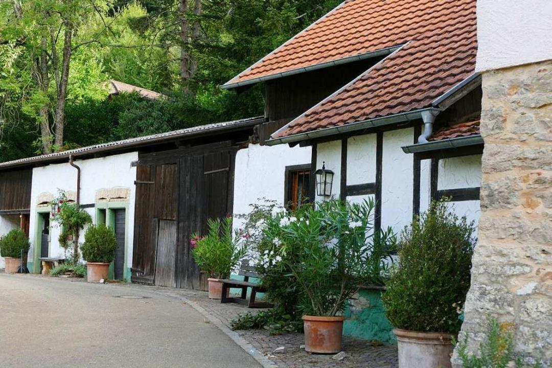 In Rheintal gibt's viel Ruhe und Idyll.  | Foto: Susanne Ehmann