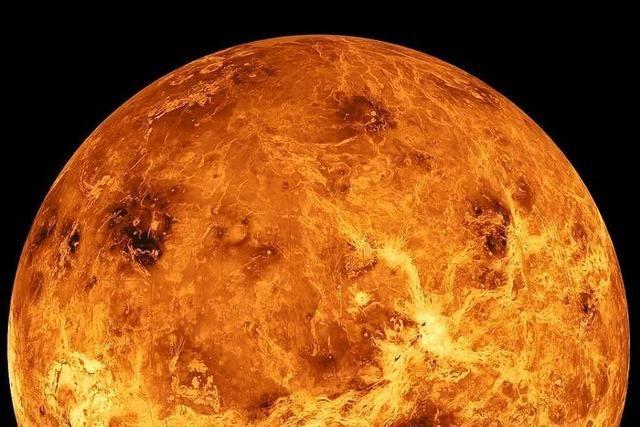Forscher: Hinweise auf Leben in der Venus-Atmosphäre