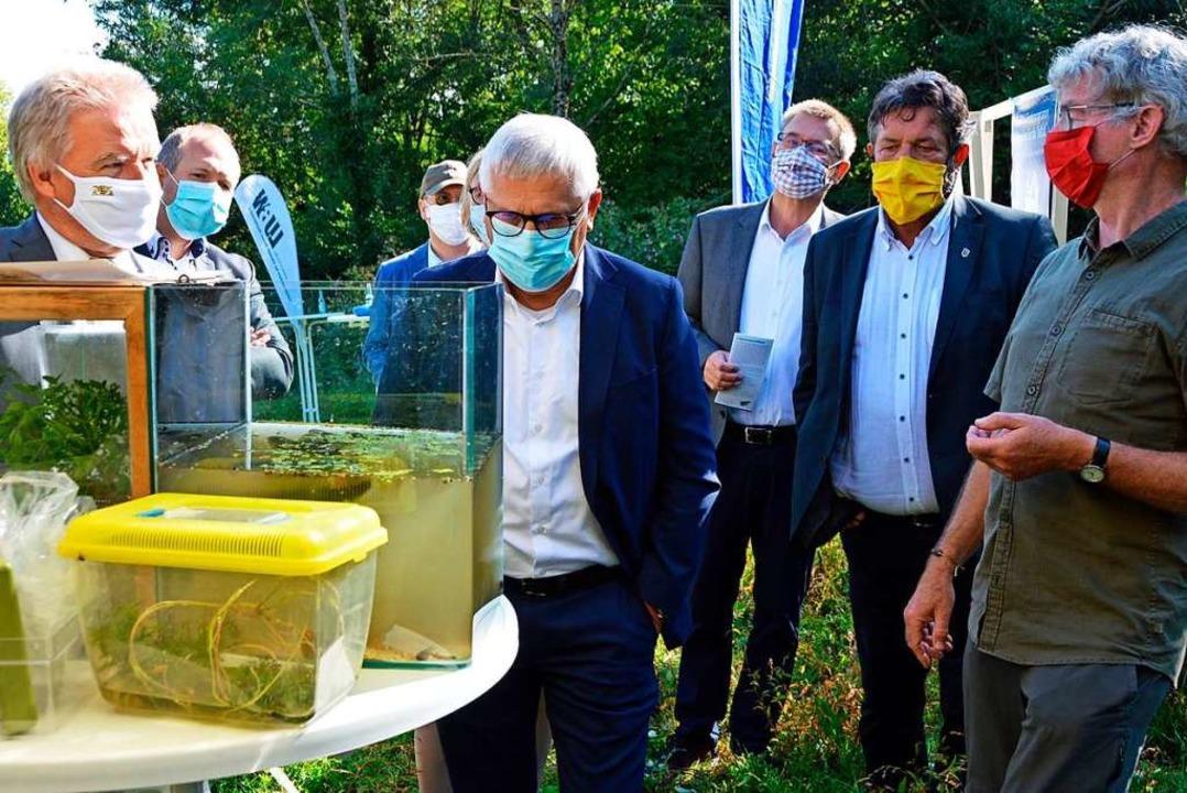 Großes Interesse zeigte nicht nur Mini...mitgebrachten Amphibien und Reptilien.  | Foto: Gerhard Lück