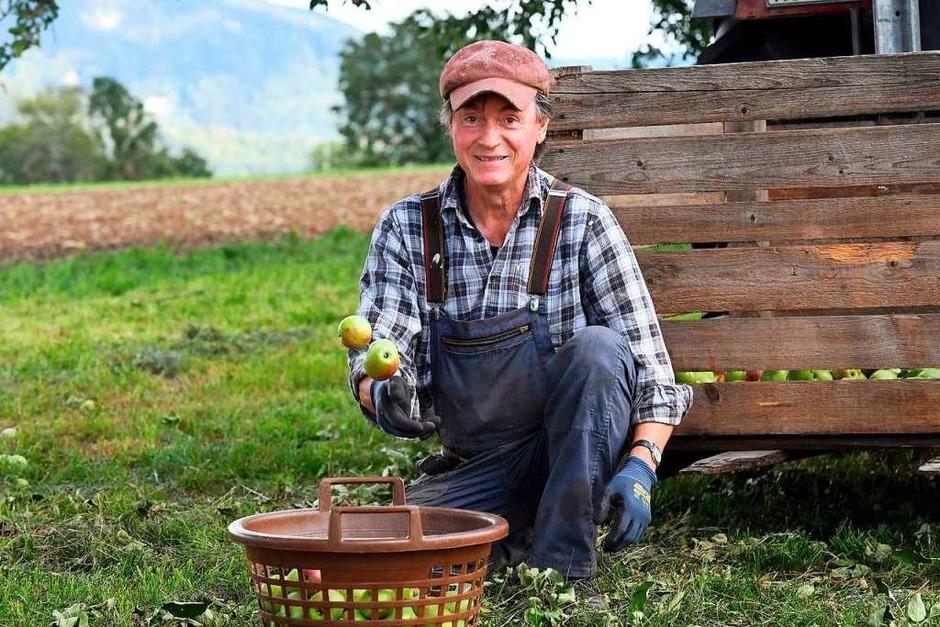 Karl-Heinz Vetter hat sich der Arbeit auf der Obststreuwiese von Josef Harder angenommen. (Foto: Wolfgang Scheu)
