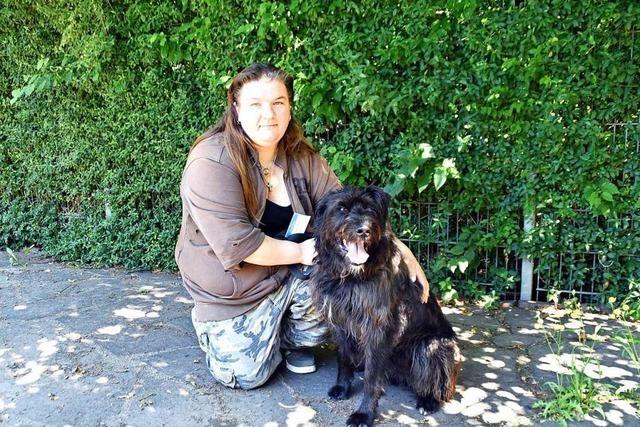 Urlaubsbetreuung in der Tierherberge Offenburg ist eingebrochen
