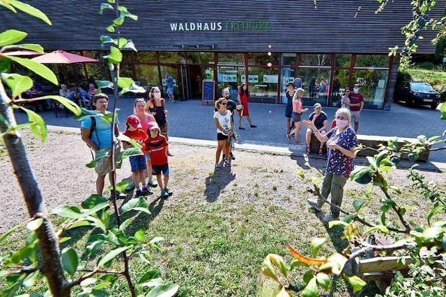 Freiburger Waldhaus startet mit Wildobst-Spaziergang in den Herbst