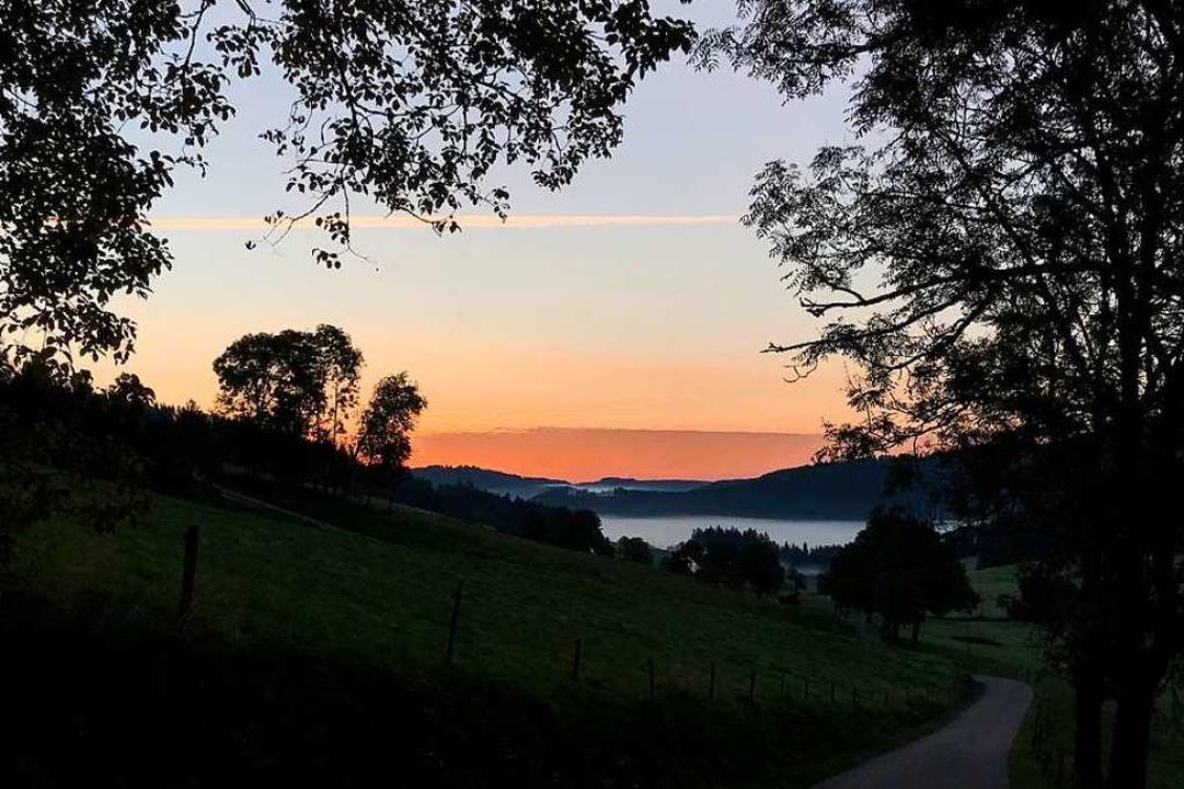 Morgenstimmung bei Spriegelsbach.  | Foto: Ulrike Weick