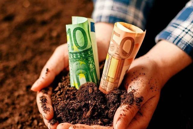 Gemeinden im Landkreis ermitteln nun gemeinsam, was Grundstücke kosten sollen
