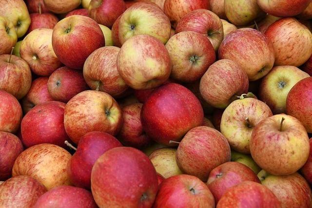 Unbekannte stehlen in Schliengen 150 Kilogramm Äpfel
