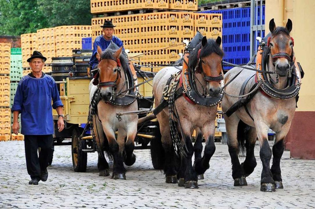 Durch die Corona-Krise musste die Brauerei ihre Pferde verkaufen.  | Foto: Ingo Schneider