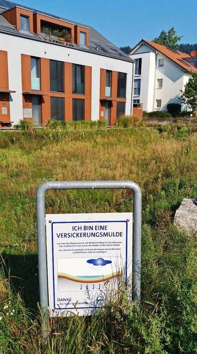 Schon im Baugebiet Hornbühl-West gibt&...rnbühl-Ost, wo die Erschließung läuft.  | Foto: Thomas Jäger