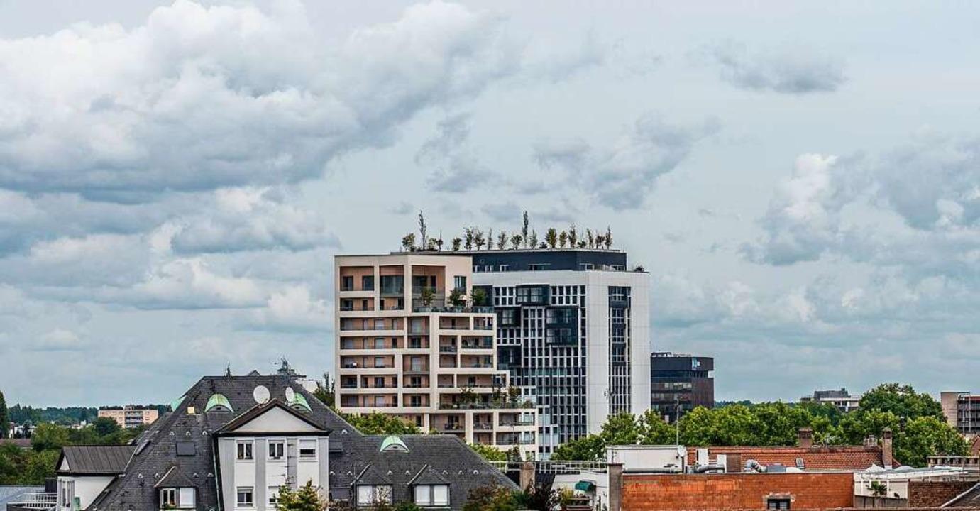 Eichen, Linden, Ahornbäume, Buchen, Bi...Höhe auf einem  Hochhaus in Straßburg.  | Foto: teli