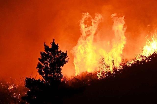 Der Klimawandel und andere menschengemachte Gründe sind Ursachen der Waldbrände