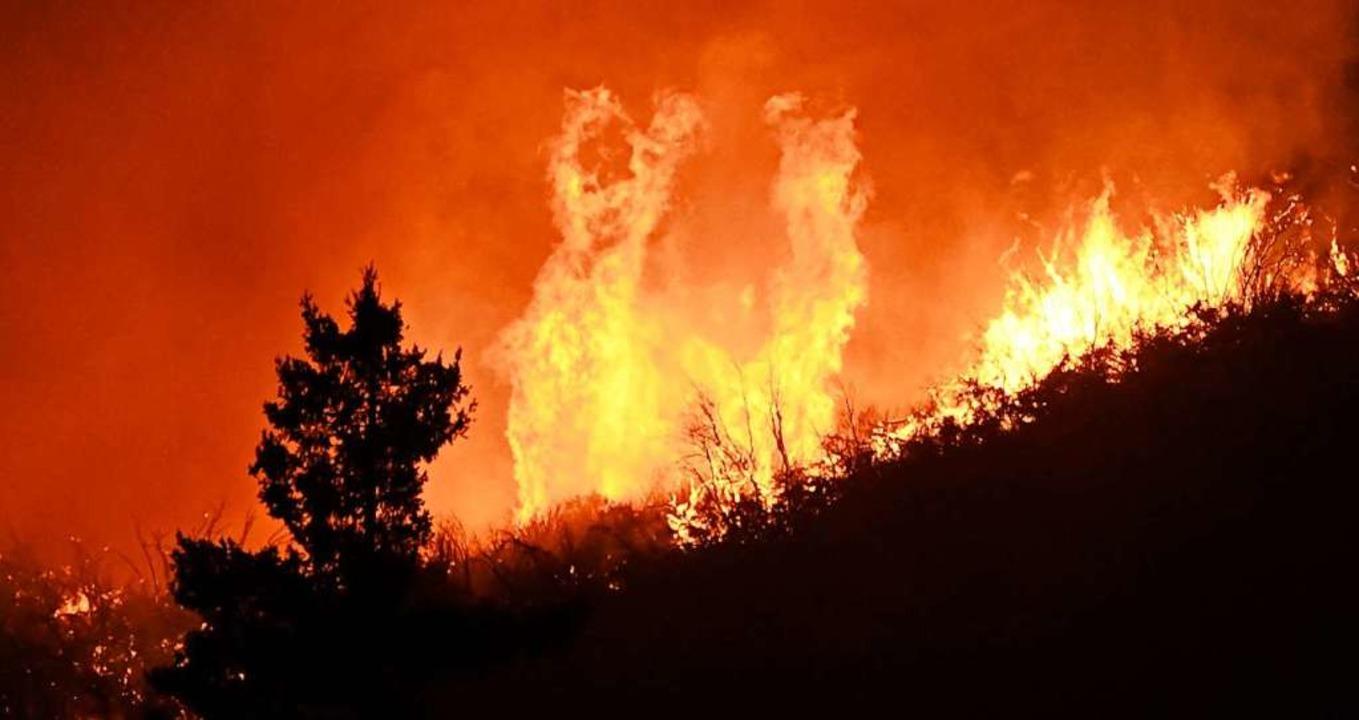 Eines der Feuer nahe Los Angeles  | Foto: Gene Blevins (dpa)