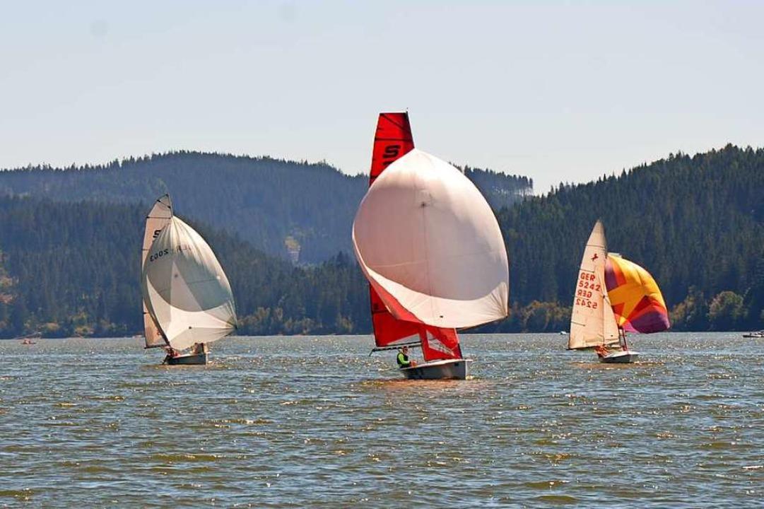Wie für das perfekte Foto ausgerichtet: Segelboote am Schluchsee  | Foto: Ulrike Ott
