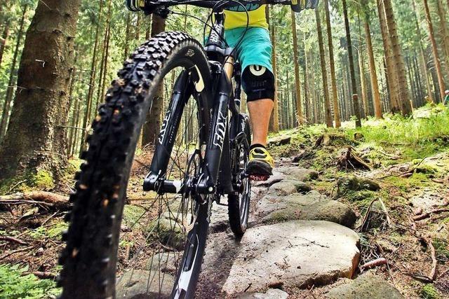 Unbekannte legen illegalen Fahrrad-Trail am Tüllinger Berg an