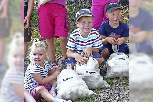 Kartoffelacker für Gemeinschaft