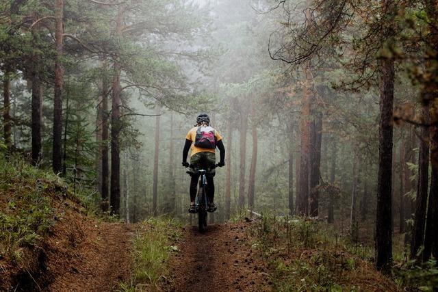 Schwarzwaldverein will Mountainbiker als neue Mitglieder gewinnen