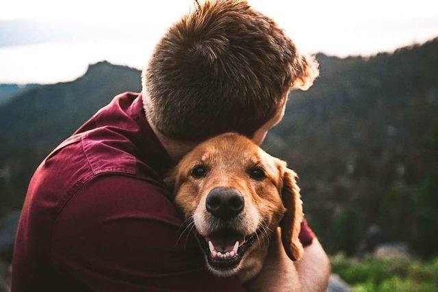 Warum es so gut tut, ein Haustier zu haben