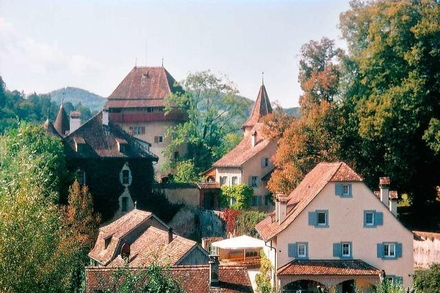 Durch alte Eichenhaine rund um Schloss Wildenstein im Schweizer Jura