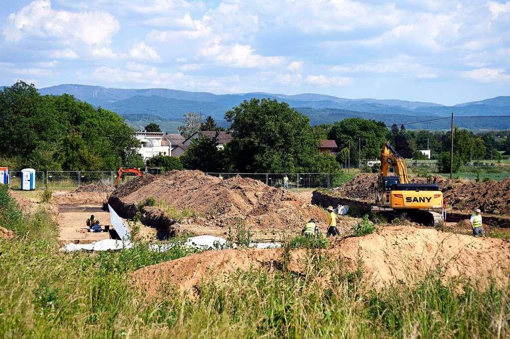 Stuckert Wohnbau will sich juristisch gegen die Stadt Freiburg wehren - Freiburg - Badische Zeitung