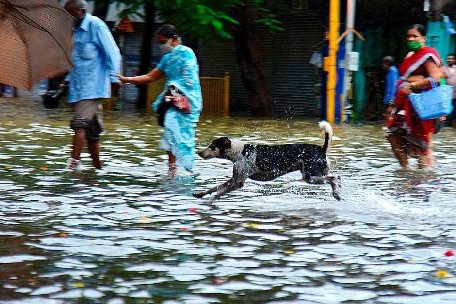 Hochwasser in der indischen Metropole (Foto: SUJIT JAISWAL (AFP))