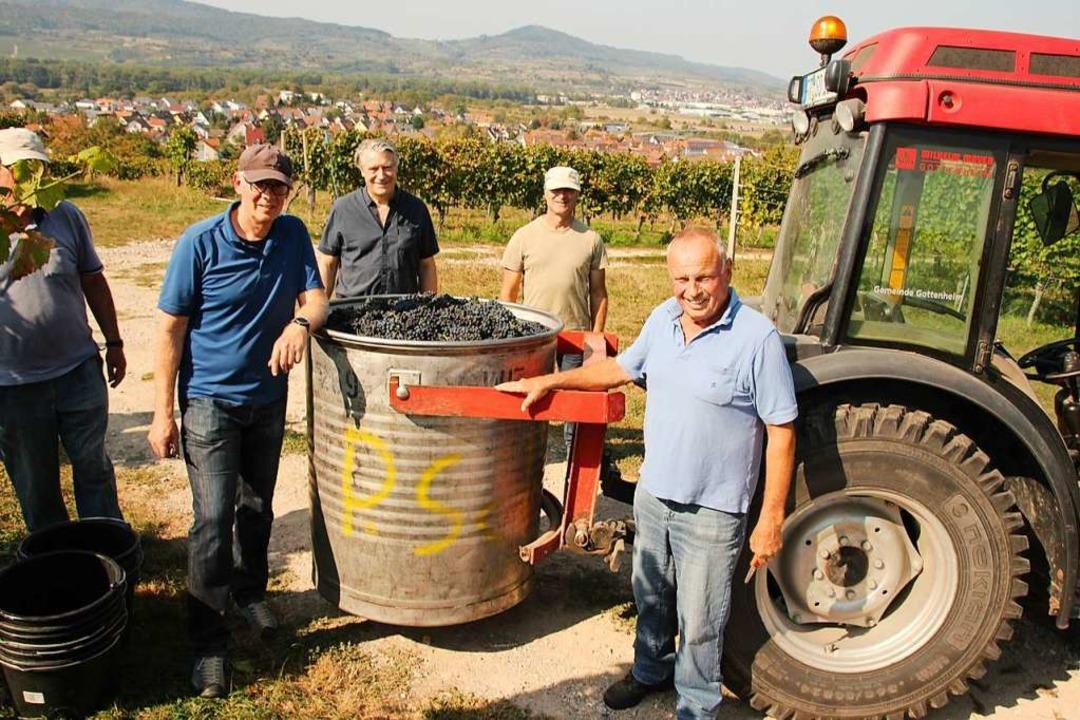 Herbsten im politischen Weinberg Gotte...ttenheimer WG, Max Dersch (von links).  | Foto: Mario Schöneberg
