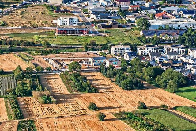 Die Stadt Ettenheim will im Westen weiter wachsen