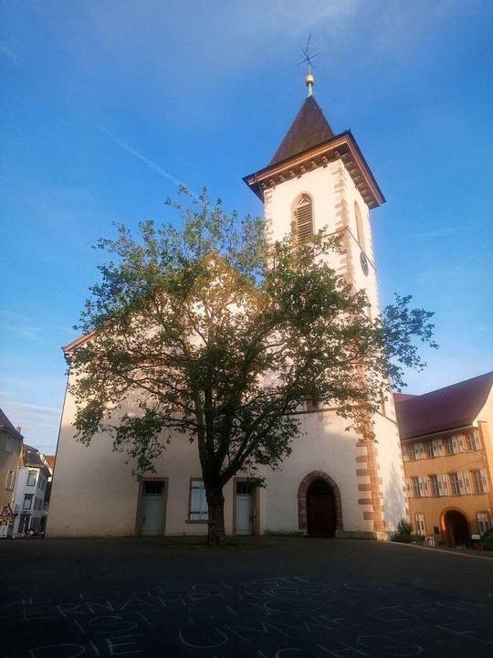 Reinhard Schellenberg predigte in der Stadtkirche.  | Foto: Daniel Scholaster