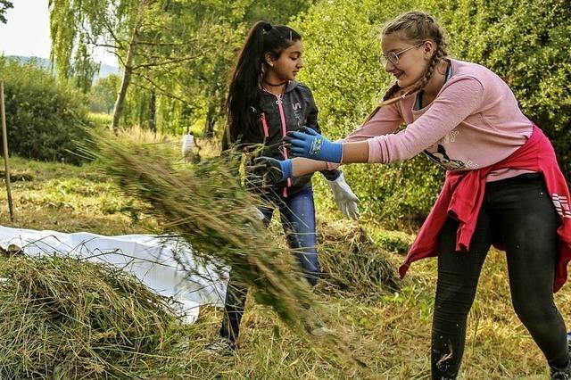 Biotoppflege in Ettenheim