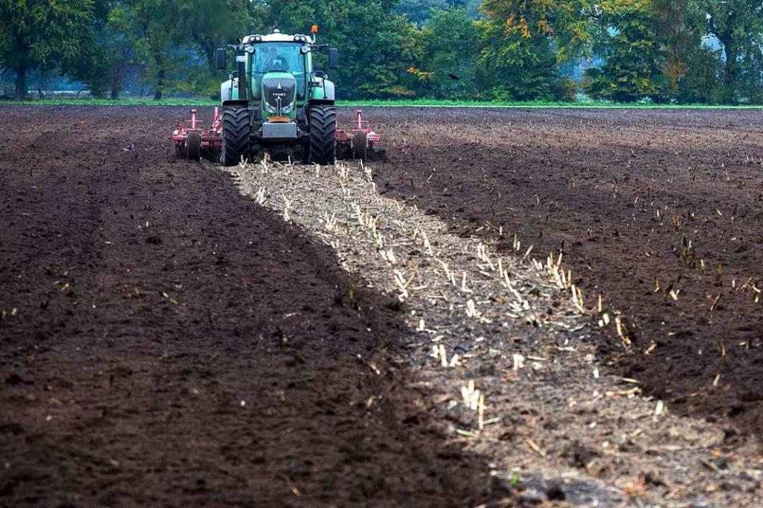 Flirt landwirt kostenpflichtig