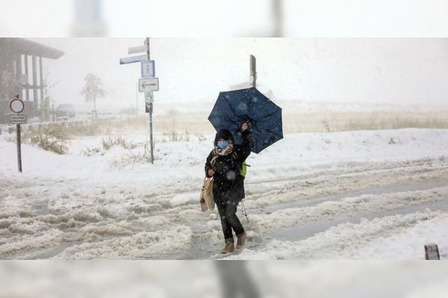 Erster Schnee am Feldberg