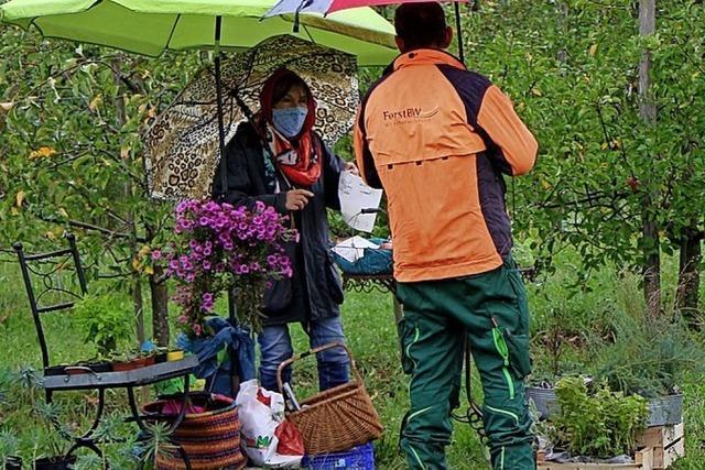 Neues für den Garten beim Pflanzenmarkt