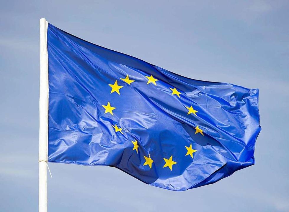 EU Flagge  | Foto: Patrick Pleul (dpa)