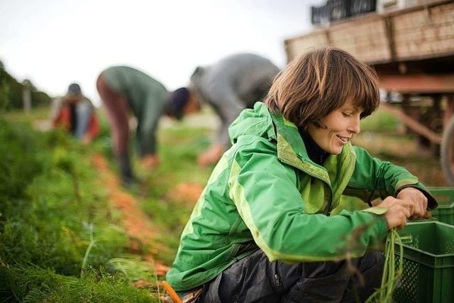 Gärtnerpaar sucht Mitstreiter für Bio-Landwirtschaftsprojekt in Ettenheim