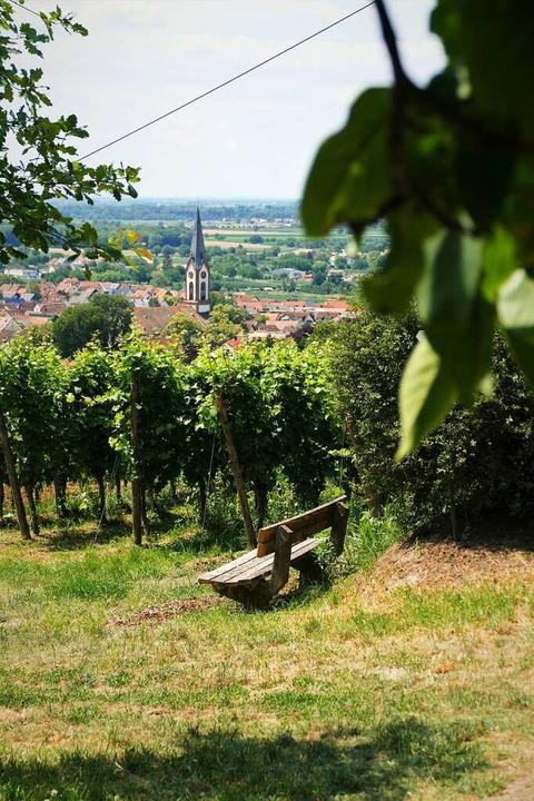 Blick auf Ihringen  | Foto: Silke Kohlmann