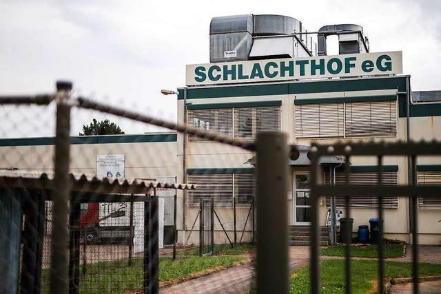 Ministerium stoppte Sanktionen gegen Schlachtbetrieb
