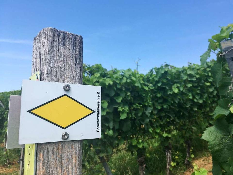 Verlaufgefahr gering – dank dem Schwarzwaldverein.    Foto: Dominik Bloedner