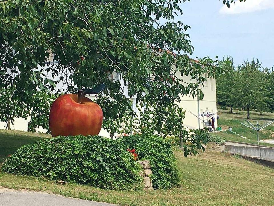 Was will uns dieser Apfel sagen? Der Obstanbau spielt eine große Rolle.    Foto: Dominik Bloedner