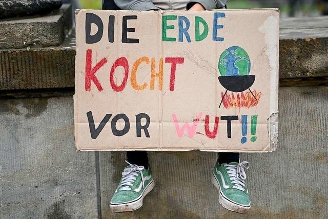Emmendingen soll bis 2040 klimaneutral werden