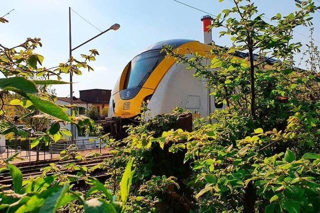 13 Züge der Breisgau-S-Bahn sind seit Montag ganz oder zum Teil ausgefallen