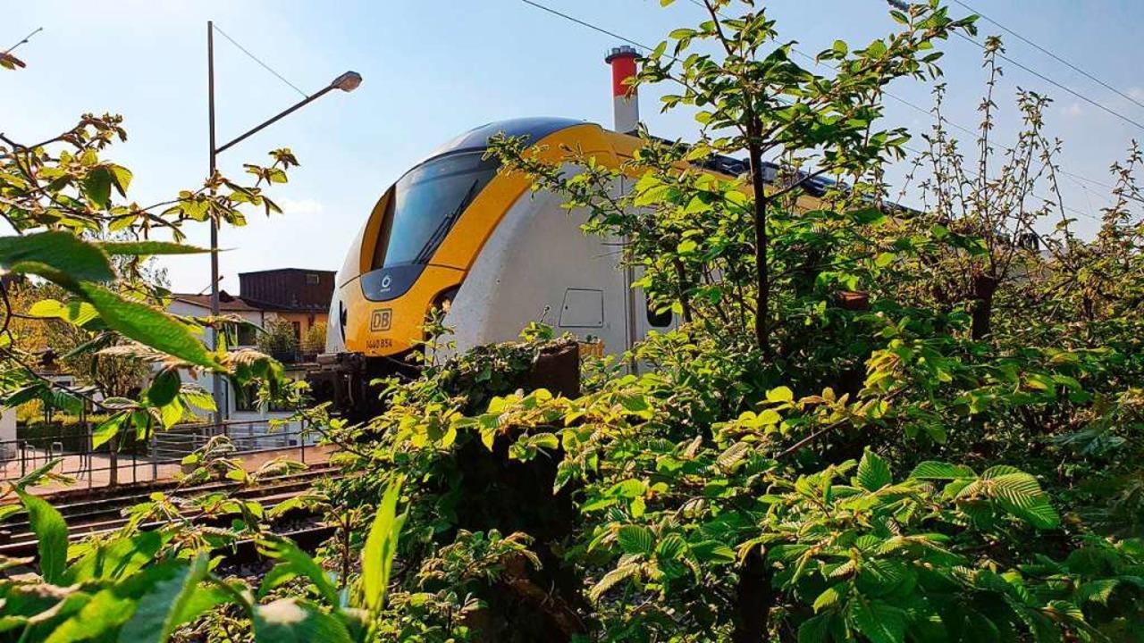 Nicht immer kommt die Breisgau-S-Bahn rechtzeitig an.  | Foto: Sebastian Wolfrum