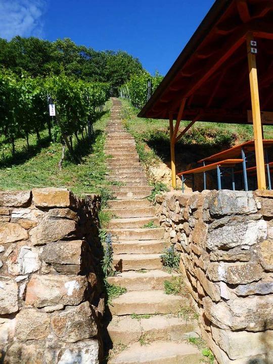 Durch solche Steintreppen und Trockenm..., an diesen Steillagen Wein anzubauen.  | Foto: Michael Neubauer