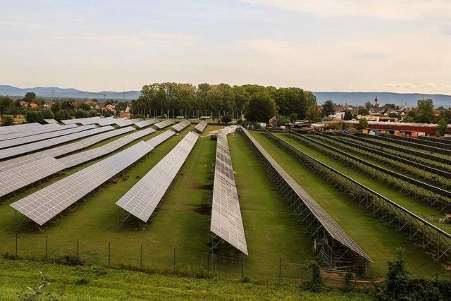 Aus der Deponie soll ein Solarkraftwerk werden