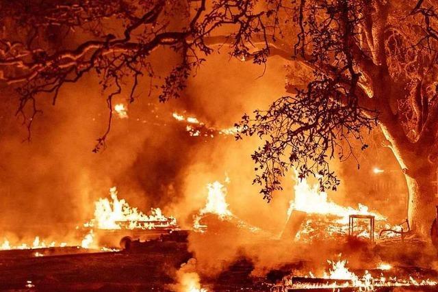 Fotos: Waldbrände legen Weingüter in Kalifornien in Schutt und Asche