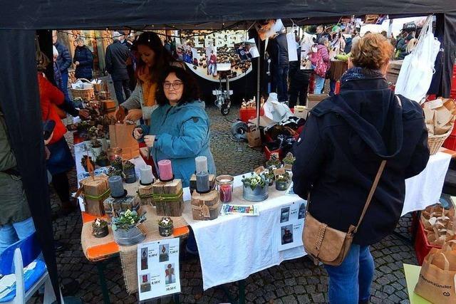Berufsinformationstag und Martinimarkt in Elzach fallen aus