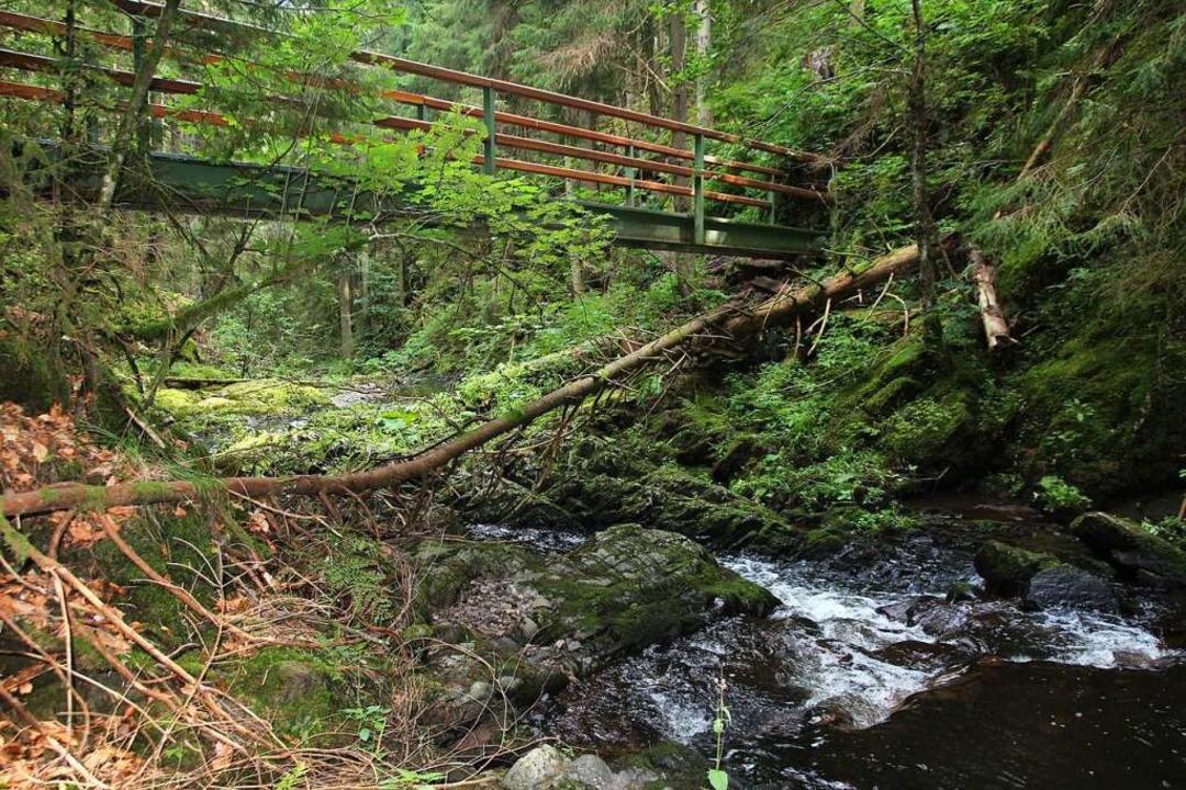 Immer wieder quert man den Rötenbach über Brücken.  | Foto: Michael Saurer