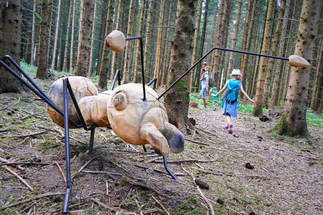 Am Ende der Wanderstrecke beginnt ein Ameisenpfad – er ist unübersehbar.  | Foto: Silke Kohlmann