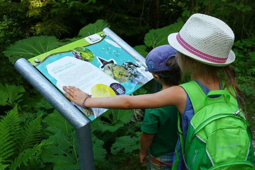 Infotafeln für Lernbegierige  | Foto: Silke Kohlmann