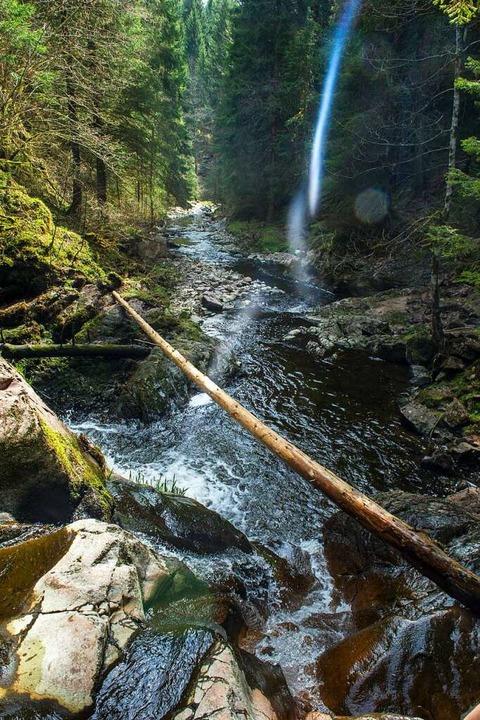 Entspannung und Natur pur – und ...nvasion einheimischer Touristen erlebt  | Foto: Andrea Schiffner