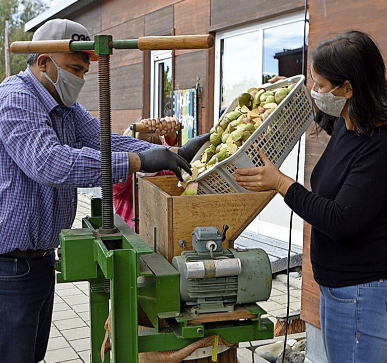 Vor dem Pressen werden die Apfelstücke  gemahlen.    Foto: Horatio Gollin
