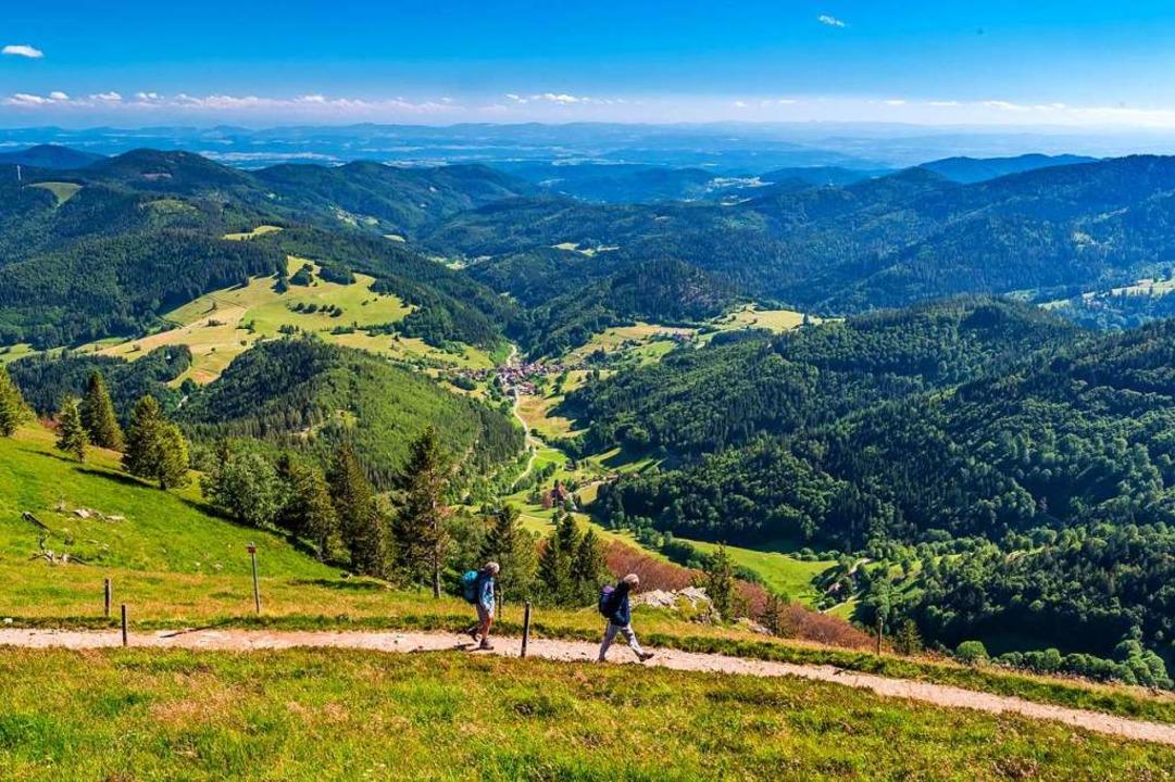 Belchensteig: grandiose Ausblick, abwechslungsreicher Landschaft  | Foto: Klaus Hansen (Schwarzwaldregion Belchen)