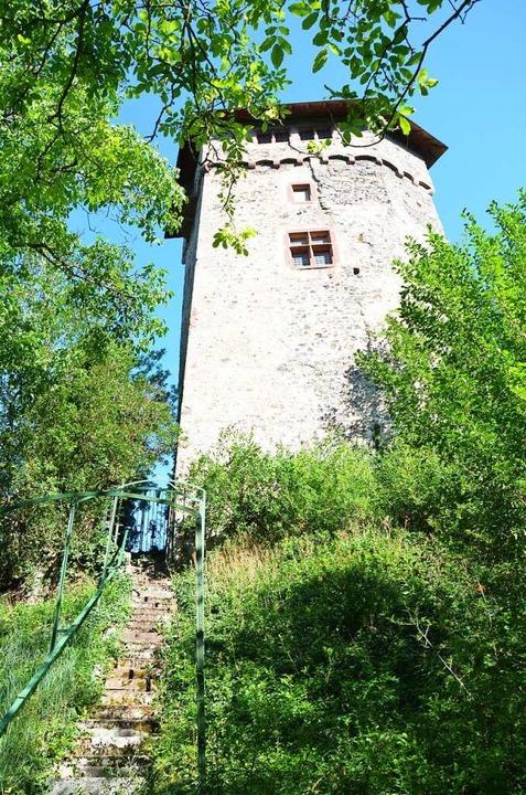 Treppe zur Burg Sponeck  | Foto: Ulrike Ott