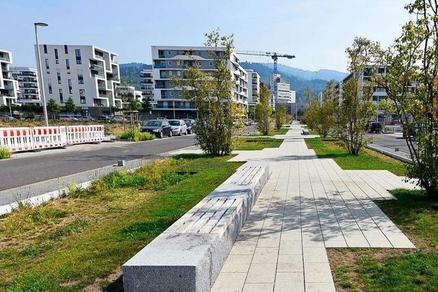 Wie ein Immobilienprofi einen Fall von Vorkassenbetrug in Freiburg ausmachte
